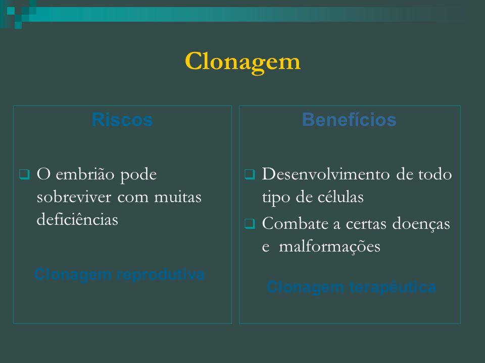 Clonagem Riscos  O embrião pode sobreviver com muitas deficiências Clonagem reprodutiva Benefícios  Desenvolvimento de todo tipo de células  Combate a certas doenças e malformações Clonagem terapêutica