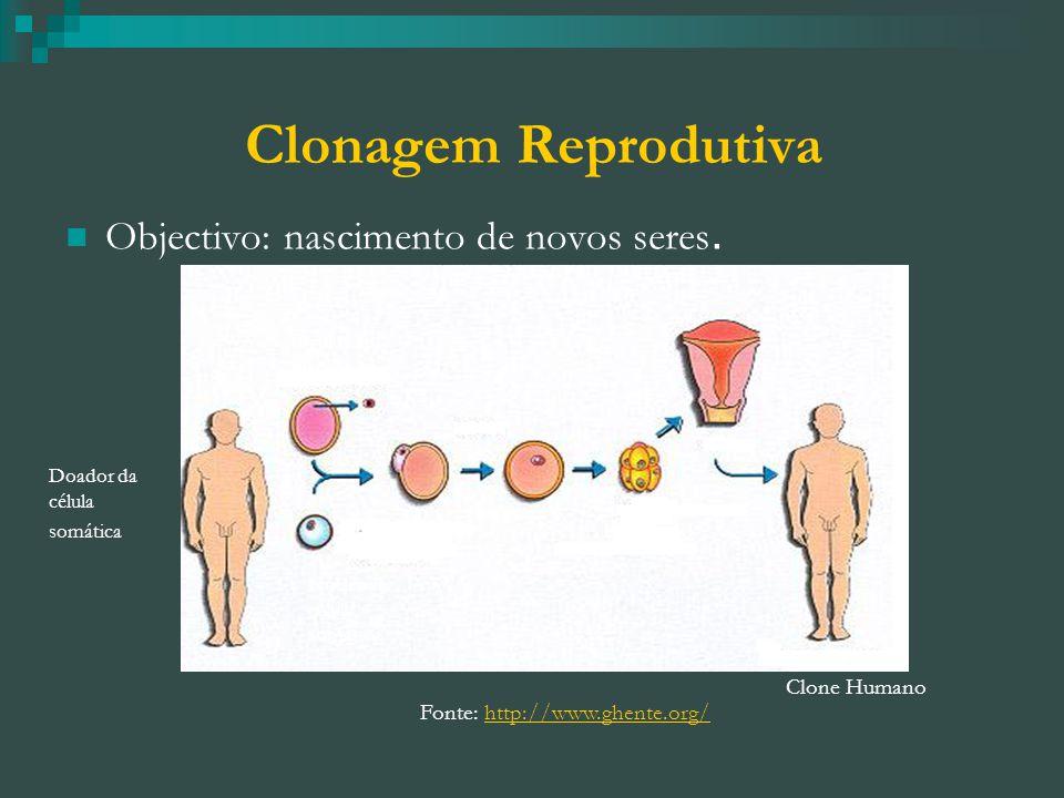 Clonagem Reprodutiva Objectivo: nascimento de novos seres.