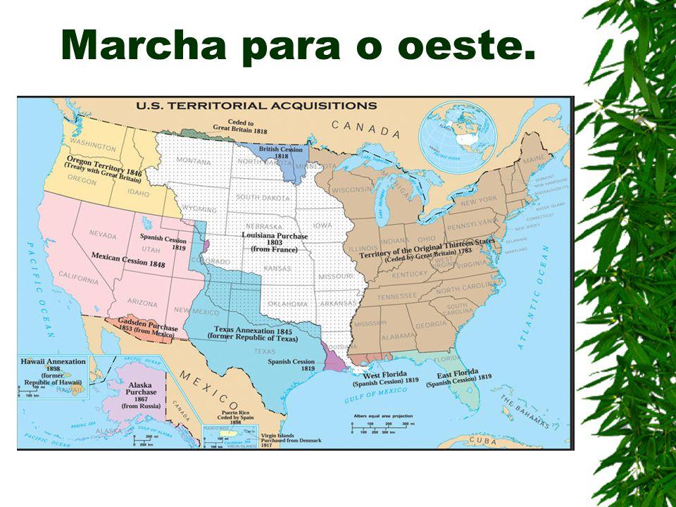  Marcha para o oeste: Incentivos para a coloniza ç ão do interior do continente.