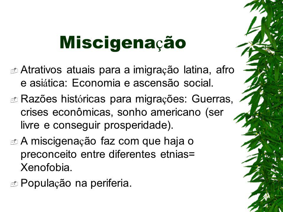 Miscigena ç ão  Atrativos atuais para a imigra ç ão latina, afro e asi á tica: Economia e ascensão social.