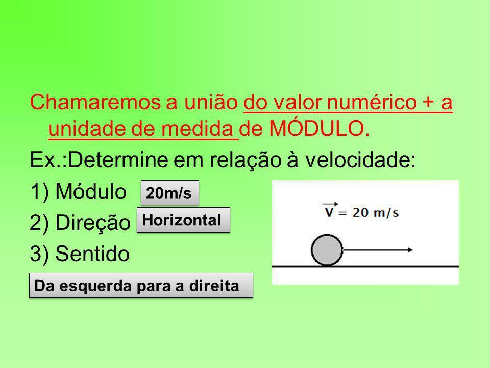 Chamaremos a união do valor numérico + a unidade de medida de MÓDULO.