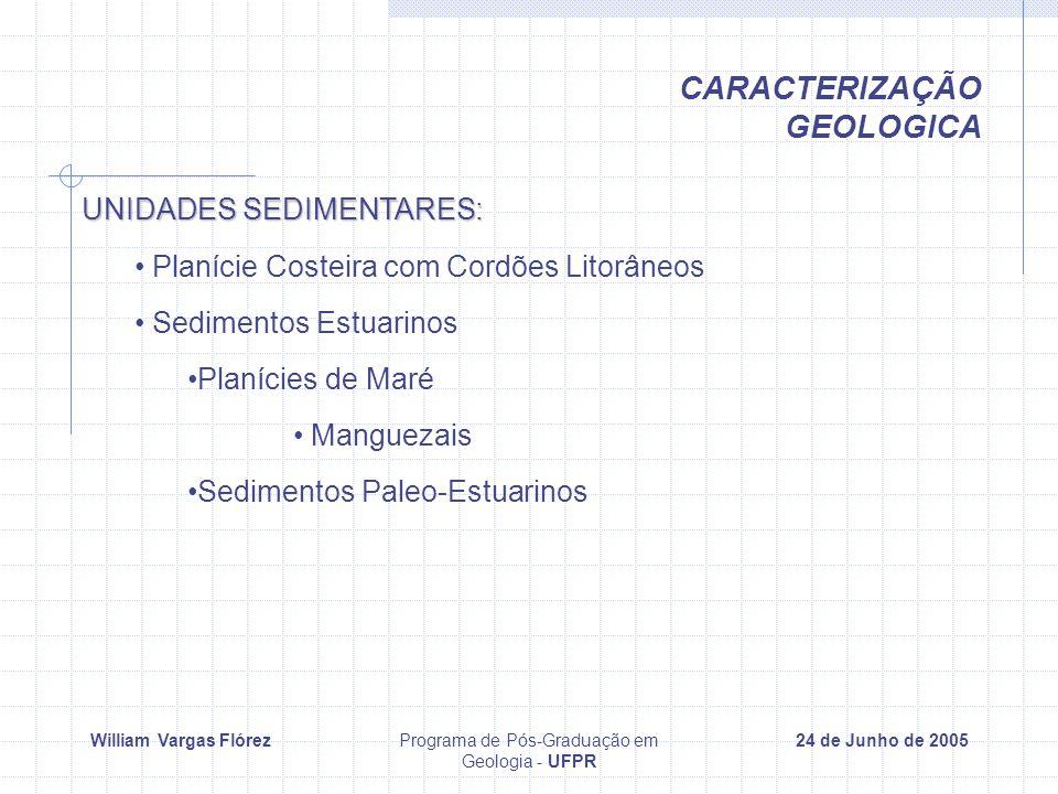 William Vargas FlórezPrograma de Pós-Graduação em Geologia - UFPR 24 de Junho de 2005 UNIDADES SEDIMENTARES: Planície Costeira com Cordões Litorâneos Sedimentos Estuarinos Planícies de Maré Manguezais Sedimentos Paleo-Estuarinos CARACTERIZAÇÃO GEOLOGICA