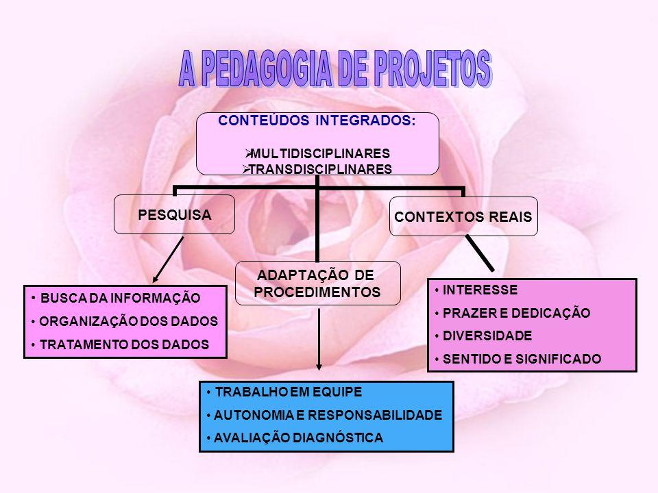 BUSCA DA INFORMAÇÃO ORGANIZAÇÃO DOS DADOS TRATAMENTO DOS DADOS TRABALHO EM EQUIPE AUTONOMIA E RESPONSABILIDADE AVALIAÇÃO DIAGNÓSTICA INTERESSE PRAZER E DEDICAÇÃO DIVERSIDADE SENTIDO E SIGNIFICADO