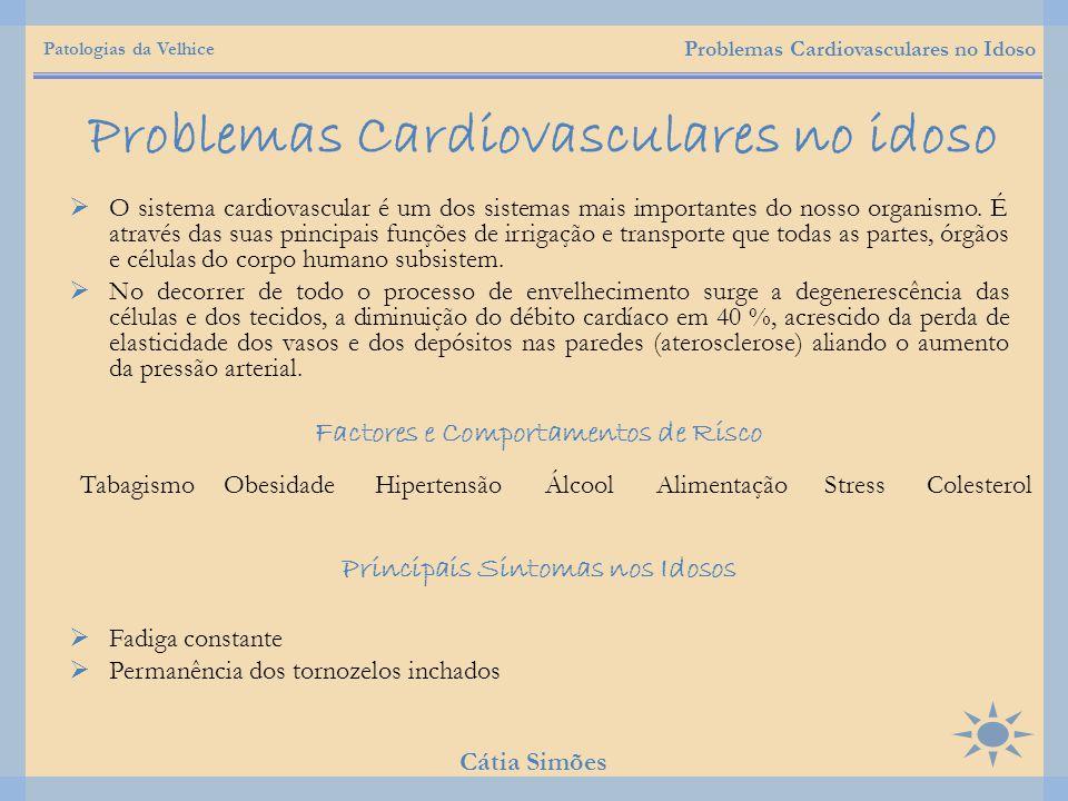  O sistema cardiovascular é um dos sistemas mais importantes do nosso organismo. É através das suas principais funções de irrigação e transporte que
