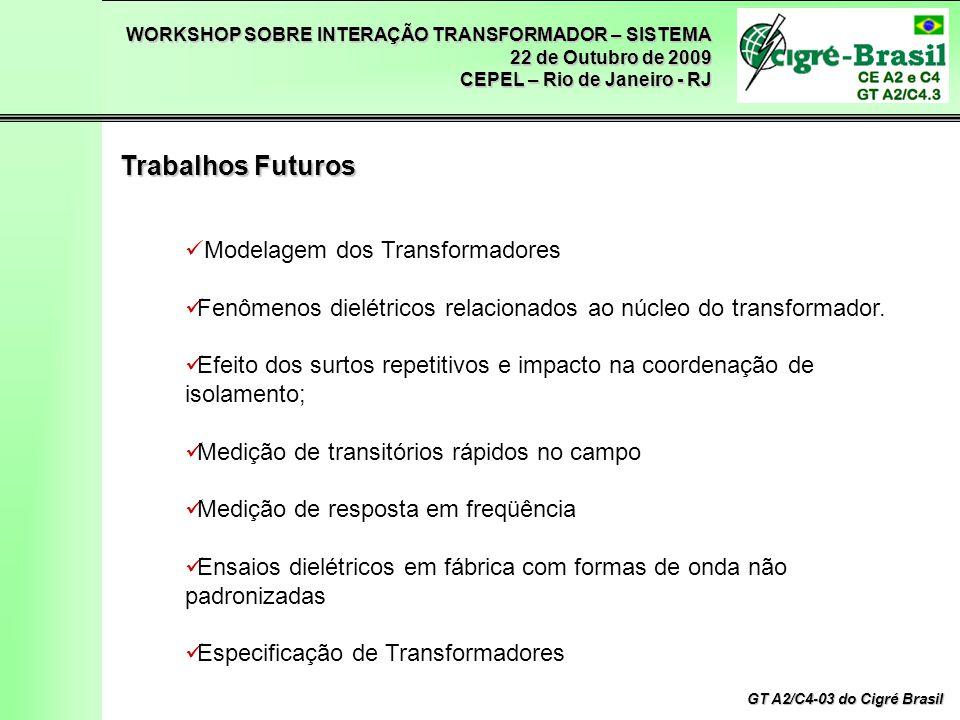 WORKSHOP SOBRE INTERAÇÃO TRANSFORMADOR – SISTEMA 22 de Outubro de 2009 CEPEL – Rio de Janeiro - RJ GT A2/C4-03 do Cigré Brasil Modelagem dos Transformadores Fenômenos dielétricos relacionados ao núcleo do transformador.