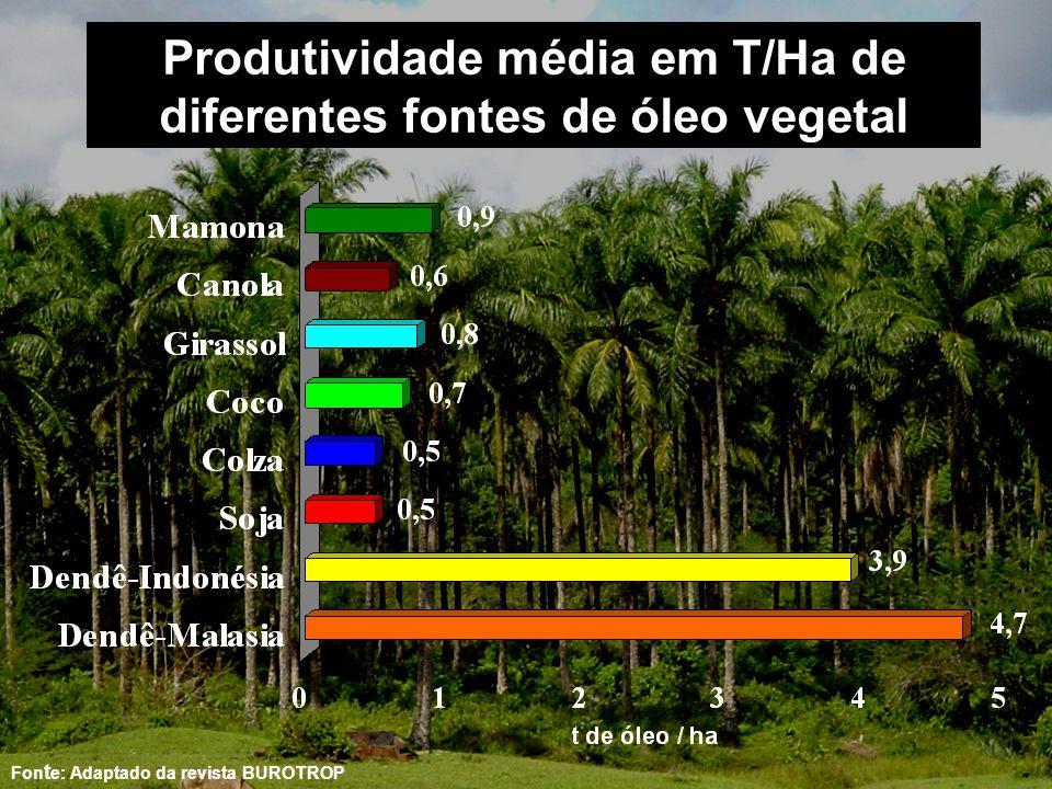 Produtividade média em T/Ha de diferentes fontes de óleo vegetal Fon t e: Adaptado da revista BUROTROP