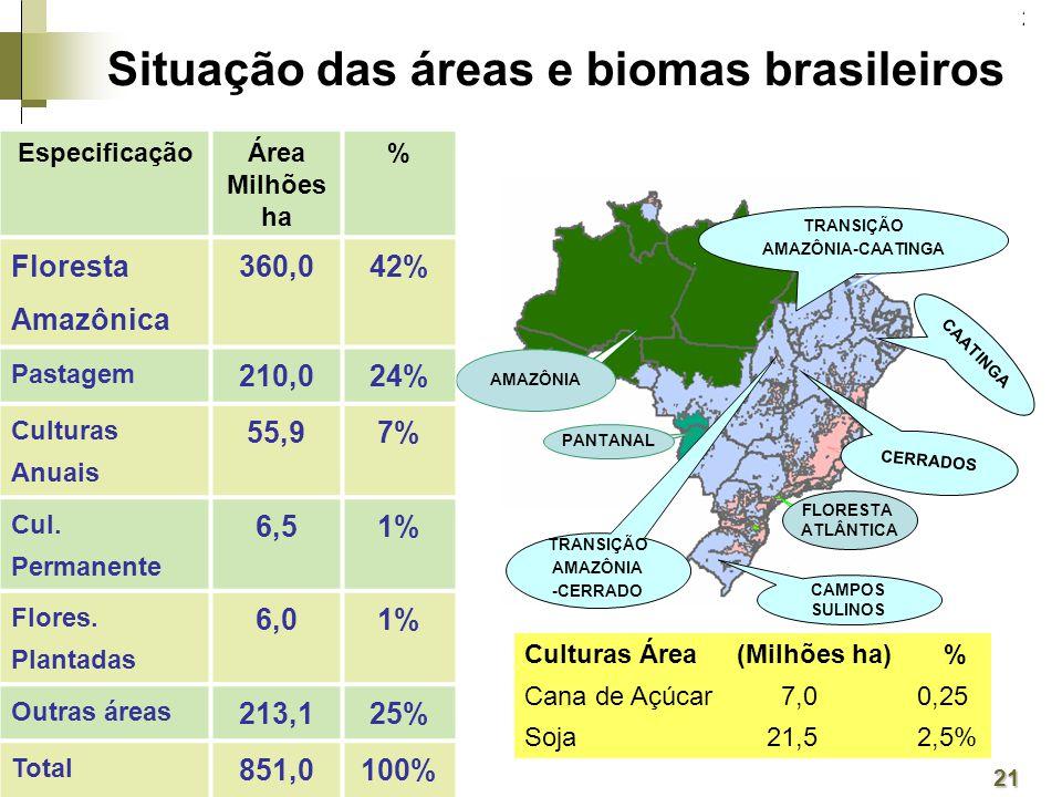 21 AMAZÔNIA FLORESTA ATLÂNTICA PANTANAL EspecificaçãoÁrea Milhões ha % Floresta Amazônica 360,042% Pastagem 210,024% Culturas Anuais 55,97% Cul.
