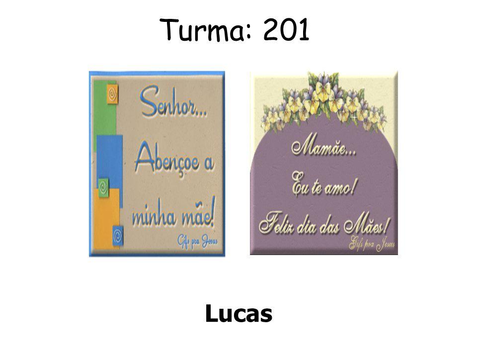 Turma: 201 Lucas