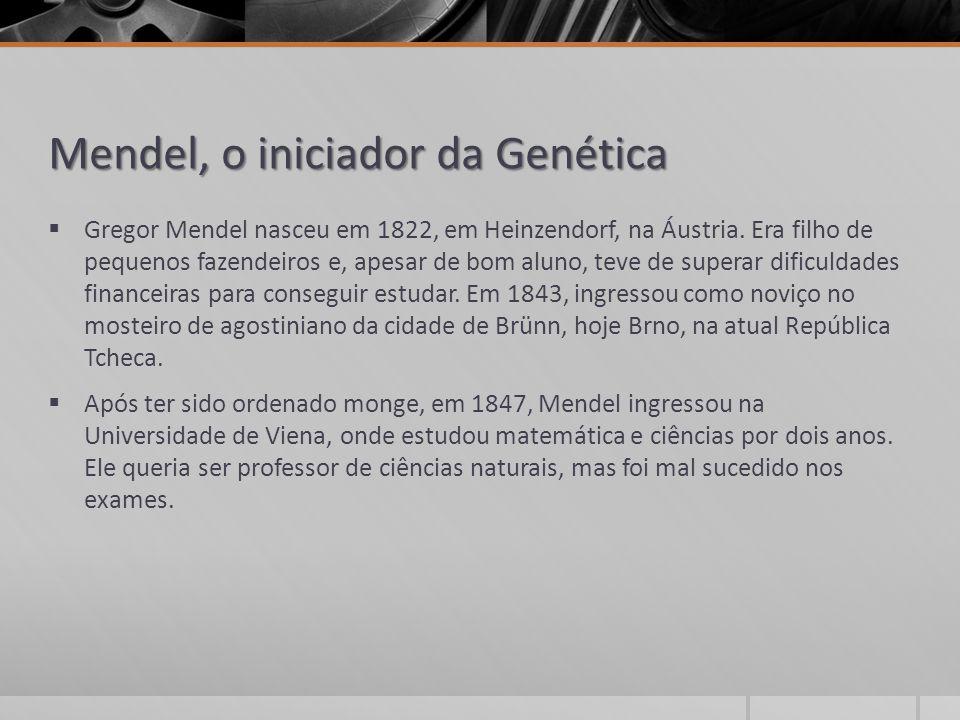 Mendel, o iniciador da Genética  Gregor Mendel nasceu em 1822, em Heinzendorf, na Áustria. Era filho de pequenos fazendeiros e, apesar de bom aluno,