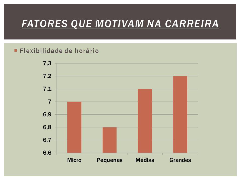  Flexibilidade de horário FATORES QUE MOTIVAM NA CARREIRA