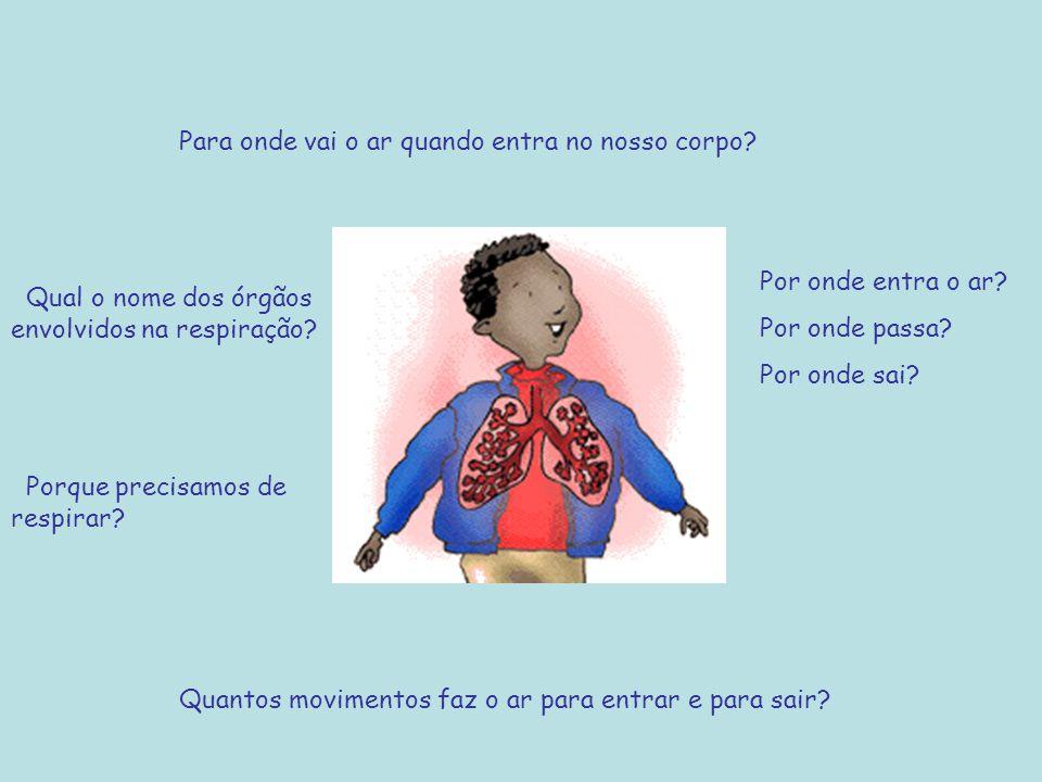Para onde vai o ar quando entra no nosso corpo? Por onde entra o ar? Por onde passa? Por onde sai? Quantos movimentos faz o ar para entrar e para sair