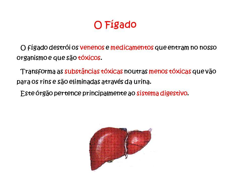 O Fígado O fígado destrói os venenos e medicamentos que entram no nosso organismo e que são tóxicos.