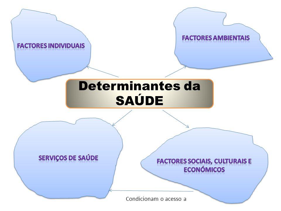 Determinantes da SAÚDE Condicionam o acesso a