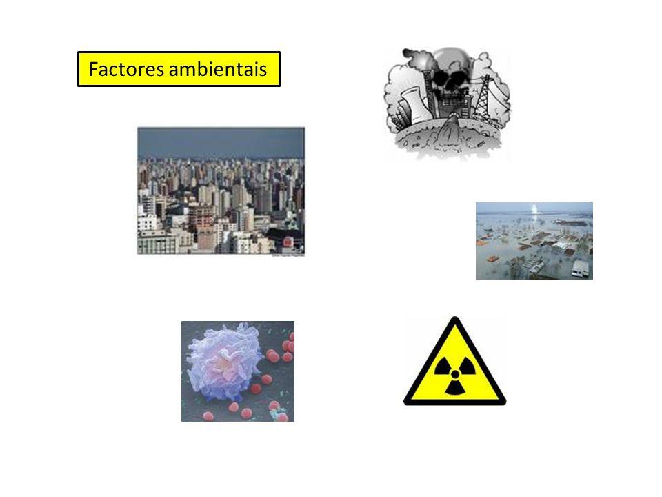 Poluição do ar Poluição da água Catástrofes naturais Ordenamento do território Radiações Agentes infecciosos