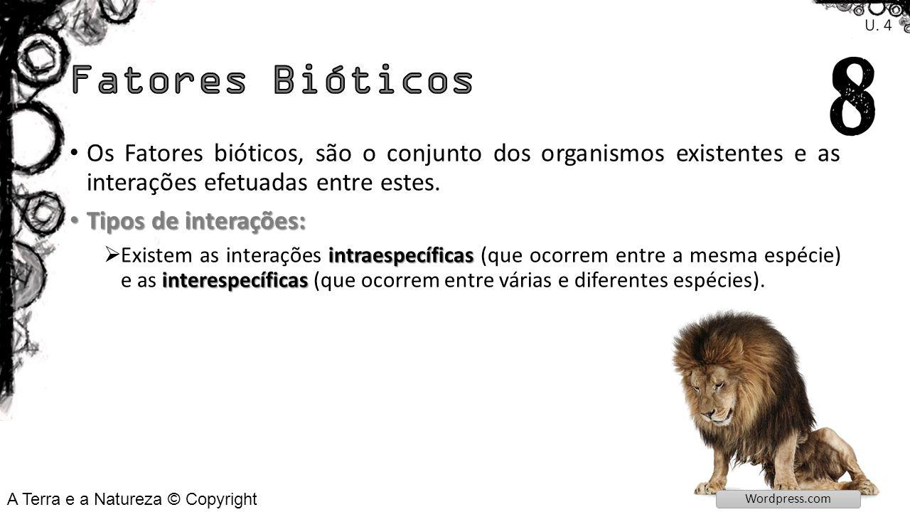 Sociedades: cooperam Sociedades: é um conjunto de animais ou plantas da mesma espécie que se ajudam entre si e cooperam.