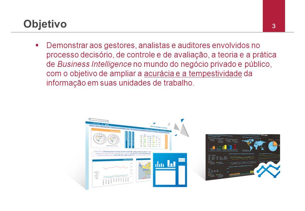 3 Objetivo  Demonstrar aos gestores, analistas e auditores envolvidos no processo decisório, de controle e de avaliação, a teoria e a prática de Busi