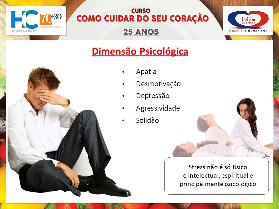 Stress não é só físico é intelectual, espiritual e principalmente psicológico Dimensão Psicológica Agressividade Solidão Apatia Desmotivação Depressão