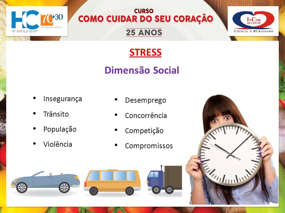 Dimensão Social Insegurança Trânsito População Violência Desemprego Concorrência Competição Compromissos STRESS