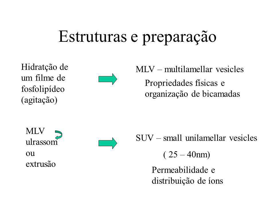 Estruturas e preparação Hidratção de um filme de fosfolipídeo (agitação) MLV – multilamellar vesicles MLV ulrassom ou extrusão SUV – small unilamellar vesicles ( 25 – 40nm) Propriedades físicas e organização de bicamadas Permeabilidade e distribuição de íons