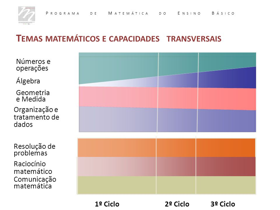 Raciocínio matemático Resolução de problemas Comunicação matemática Álgebra Números e operações Geometria e Medida Organização e tratamento de dados 1