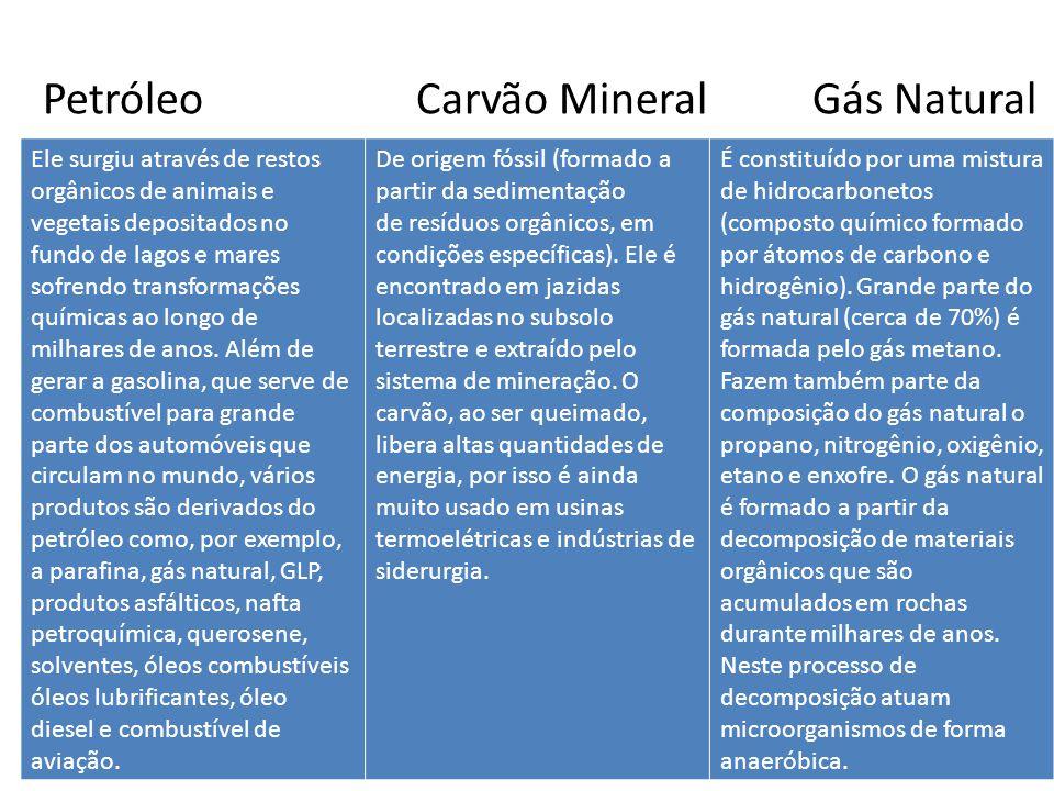 Petróleo Carvão Mineral Gás Natural Ele surgiu através de restos orgânicos de animais e vegetais depositados no fundo de lagos e mares sofrendo transformações químicas ao longo de milhares de anos.