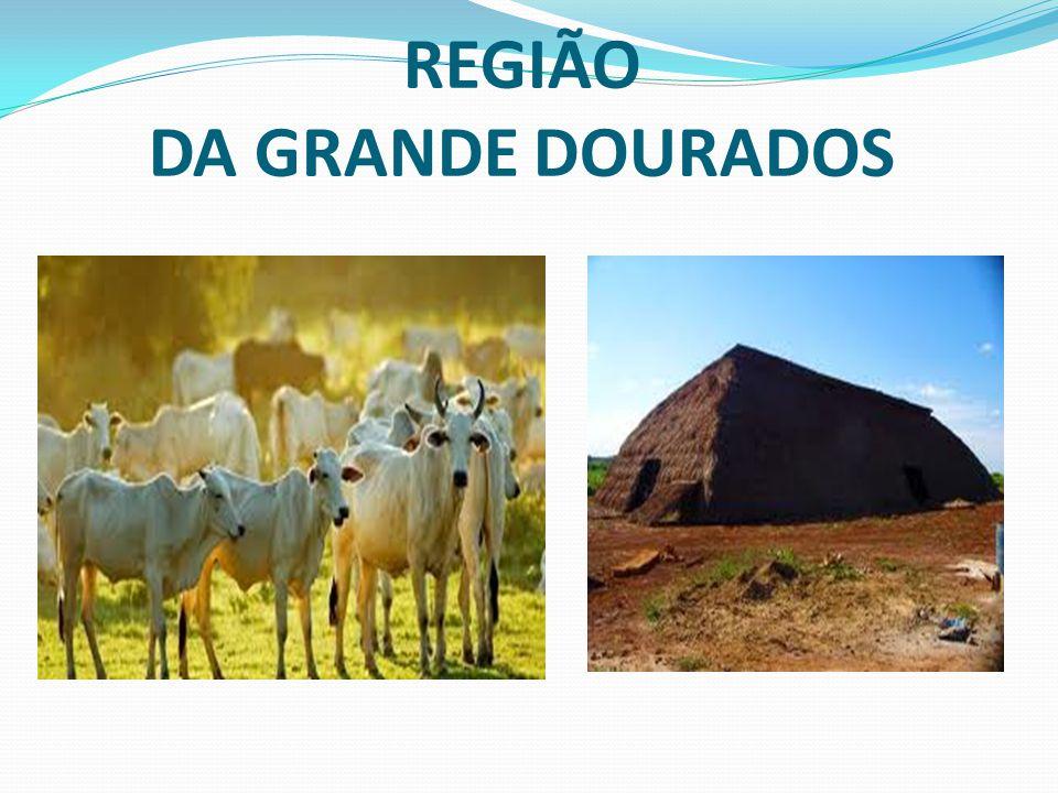 REGIÃO DA GRANDE DOURADOS
