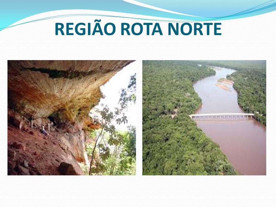 REGIÃO ROTA NORTE