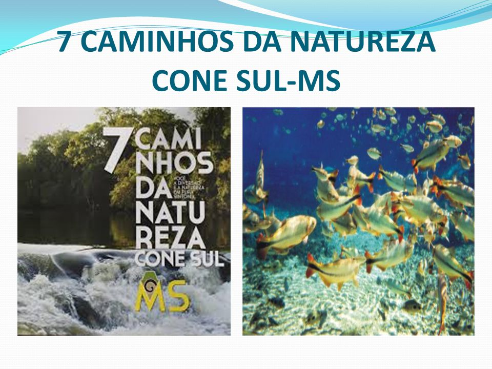 7 CAMINHOS DA NATUREZA CONE SUL-MS