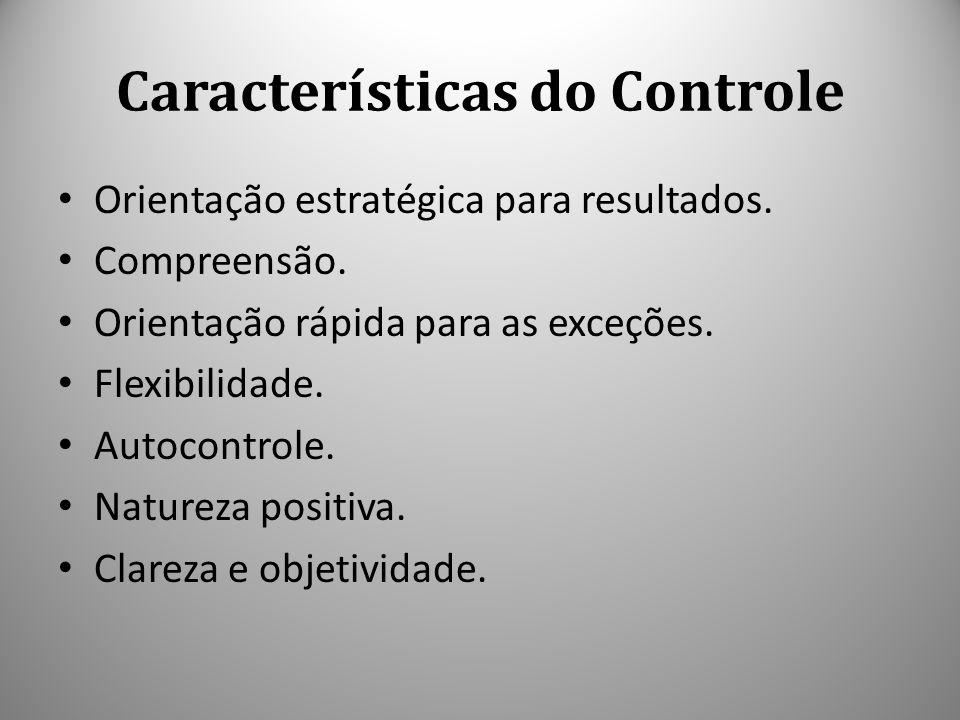 Características do Controle Orientação estratégica para resultados. Compreensão. Orientação rápida para as exceções. Flexibilidade. Autocontrole. Natu