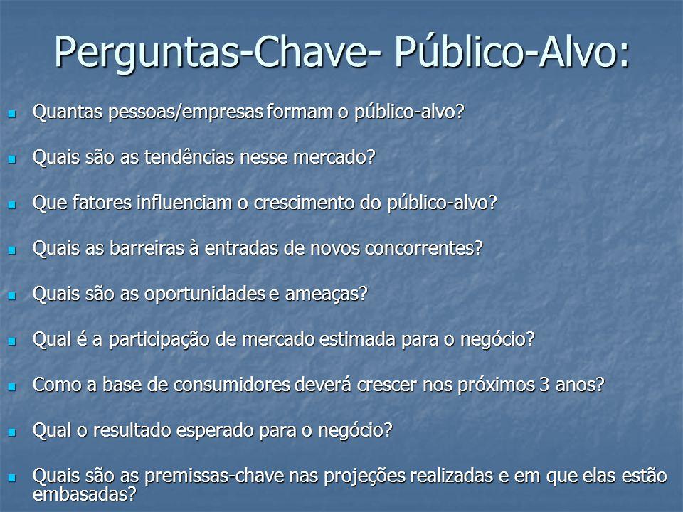 Perguntas-Chave- Público-Alvo: Quantas pessoas/empresas formam o público-alvo.