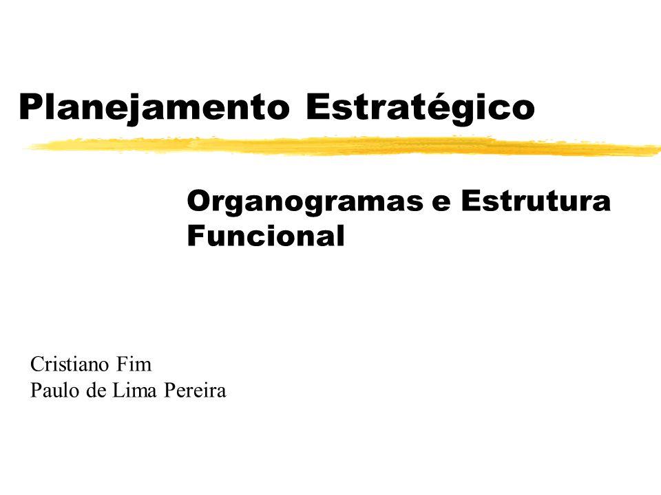 Planejamento Estratégico Organogramas e Estrutura Funcional Cristiano Fim Paulo de Lima Pereira