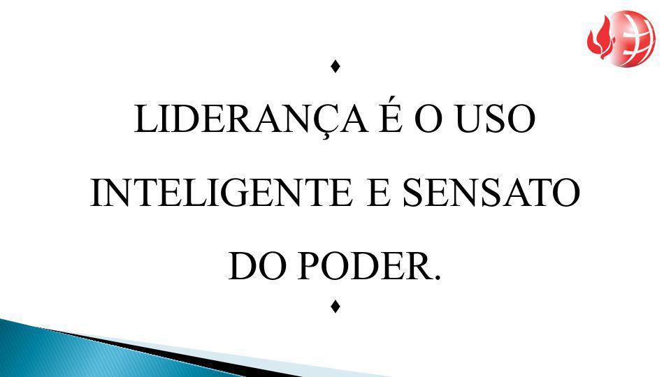 LIDERANÇA É O USO INTELIGENTE E SENSATO DO PODER. 