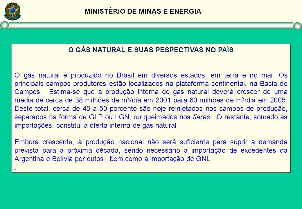 MINISTÉRIO DE MINAS E ENERGIA O GÁS NATURAL E SUAS PESPECTIVAS NO PAÍS O gás natural é produzido no Brasil em diversos estados, em terra e no mar. Os