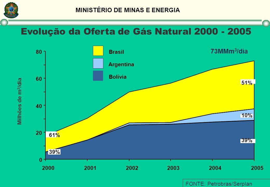 MINISTÉRIO DE MINAS E ENERGIA FONTE: Petrobras/Serplan Evolução da Oferta de Gás Natural 2000 - 2005 Bolívia Argentina Brasil 0 20 40 60 80 2000200120