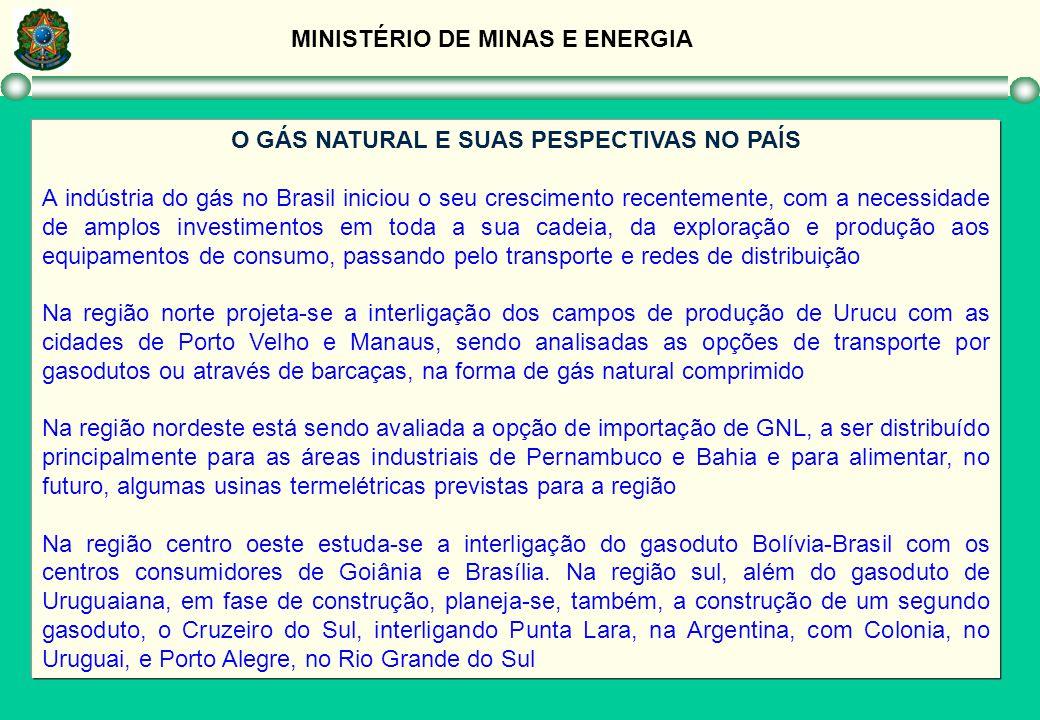 MINISTÉRIO DE MINAS E ENERGIA O GÁS NATURAL E SUAS PESPECTIVAS NO PAÍS A indústria do gás no Brasil iniciou o seu crescimento recentemente, com a nece