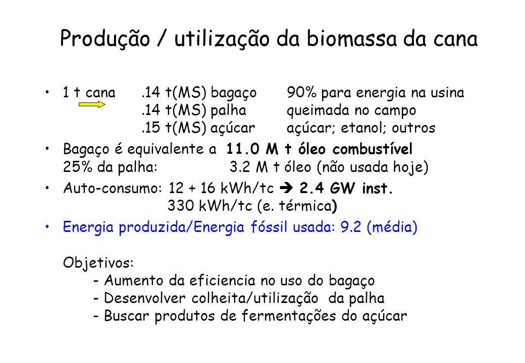Produção / utilização da biomassa da cana 1 t cana.14 t(MS) bagaço90% para energia na usina.14 t(MS) palhaqueimada no campo.15 t(MS) açúcaraçúcar; eta