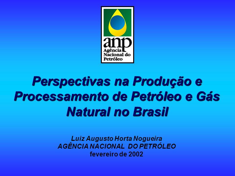 Perspectivas na Produção e Processamento de Petróleo e Gás Natural no Brasil Perspectivas na Produção e Processamento de Petróleo e Gás Natural no Brasil Luiz Augusto Horta Nogueira AGÊNCIA NACIONAL DO PETRÓLEO fevereiro de 2002