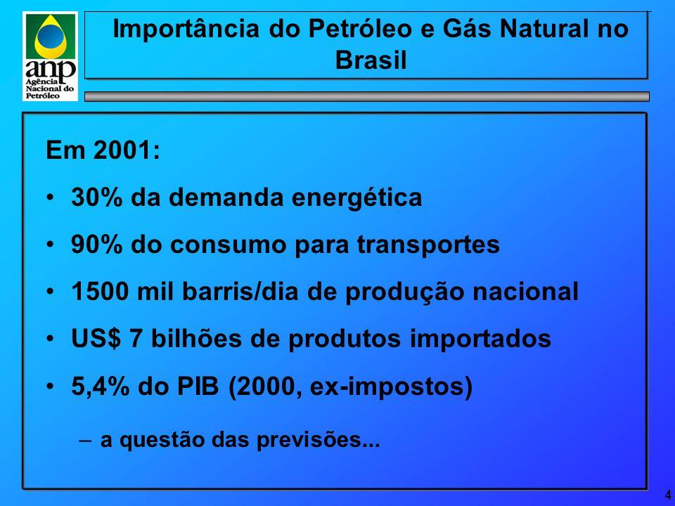 4 Importância do Petróleo e Gás Natural no Brasil Em 2001: 30% da demanda energética 90% do consumo para transportes 1500 mil barris/dia de produção nacional US$ 7 bilhões de produtos importados 5,4% do PIB (2000, ex-impostos) –a questão das previsões...