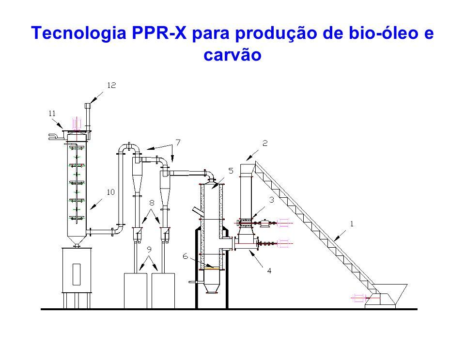 A Planta Piloto PPR-200