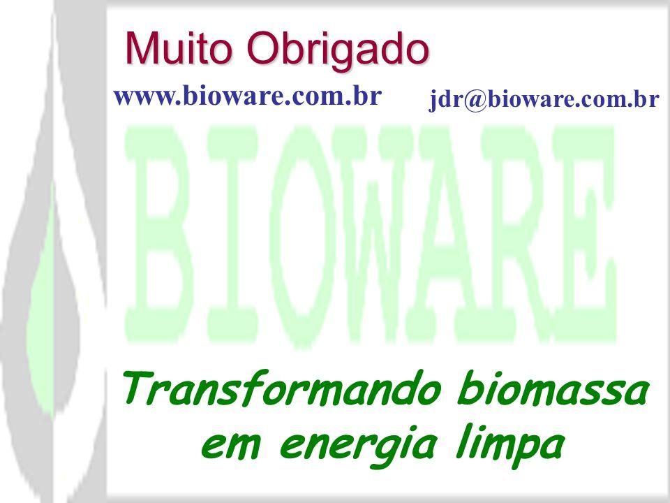 A pirólise, para produção de combustíveis e insumos químicos e energia, tem grande potencial de aplicabilidade no Brasil Os resíduos agroindustriais (