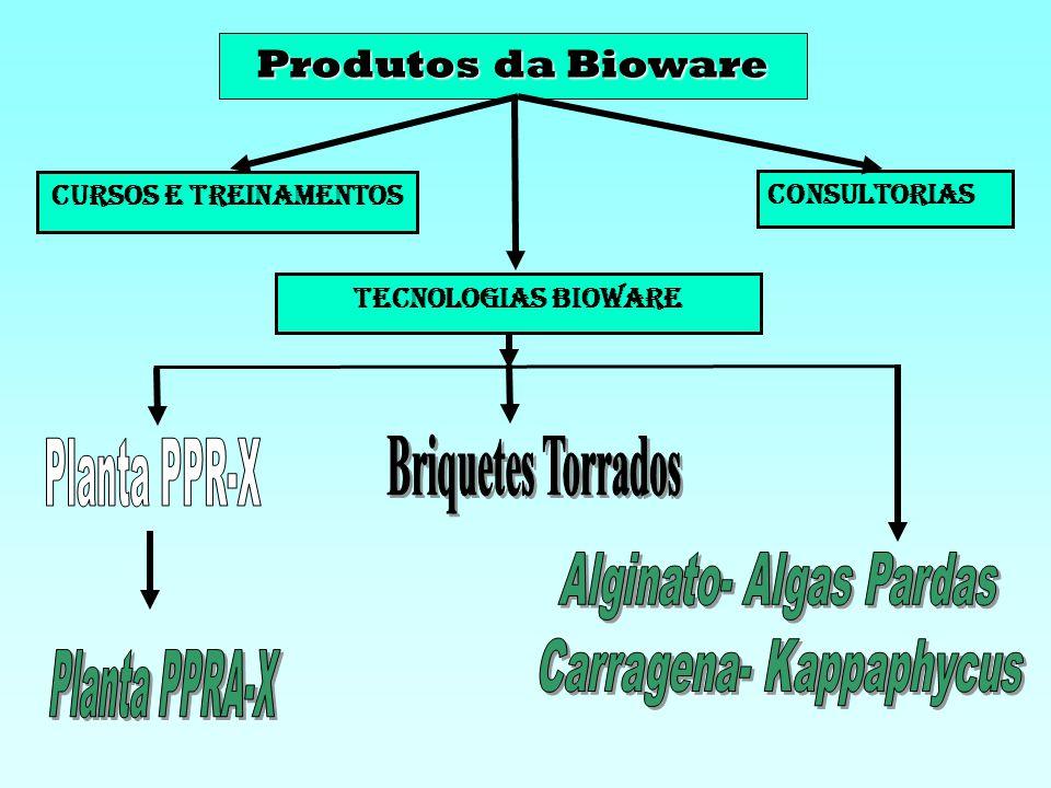 Missão Desenvolver tecnologias de transformação de biomassa em energia, materiais e combustíveis renováveis de alto valor agregado com responsabilidad