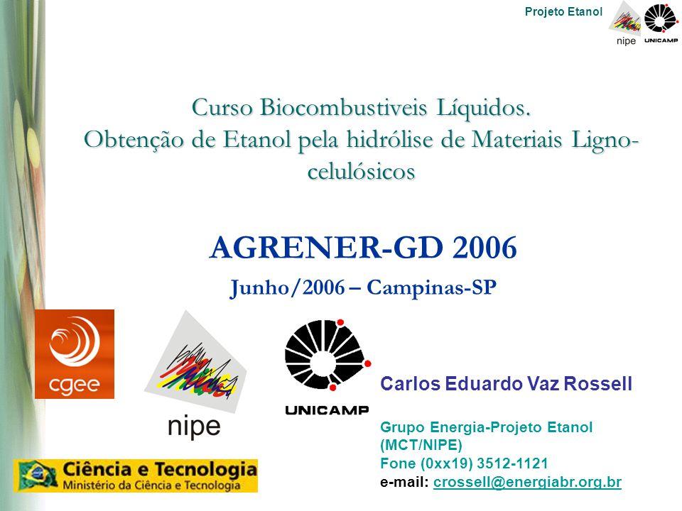Projeto Etanol Curso Biocombustiveis Líquidos.