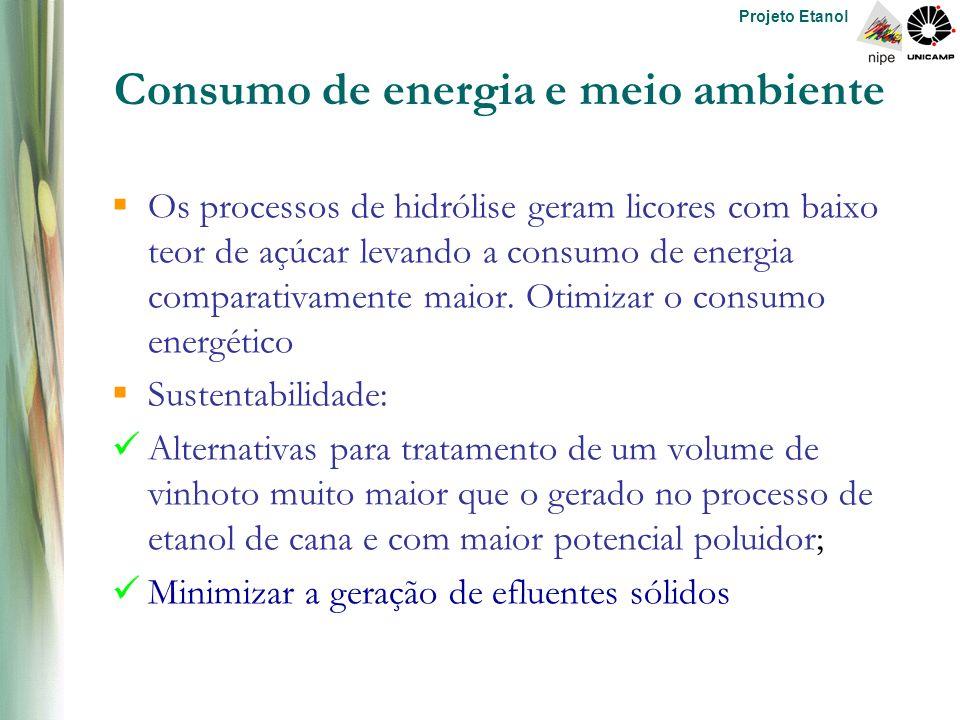 Projeto Etanol Consumo de energia e meio ambiente  Os processos de hidrólise geram licores com baixo teor de açúcar levando a consumo de energia comparativamente maior.