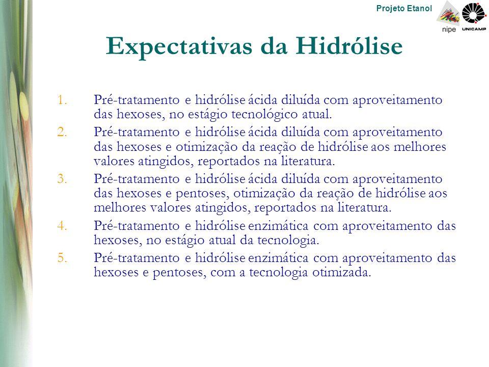 Projeto Etanol Expectativas da Hidrólise 1.Pré-tratamento e hidrólise ácida diluída com aproveitamento das hexoses, no estágio tecnológico atual.