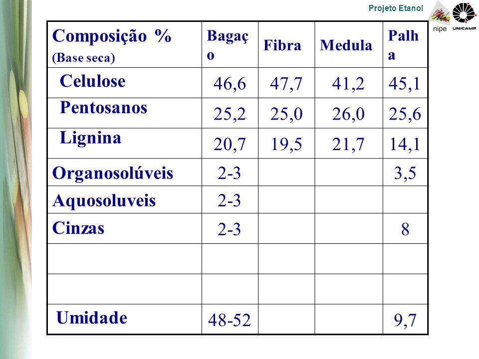 Projeto Etanol Composição % (Base seca) Bagaç o FibraMedula Palh a 46,647,741,245,1 25,225,026,025,6 20,719,521,714,1 Organosolúveis 2-33,5 Aquosoluveis 2-3 8 48-529,7 Celulose Pentosanos Lignina Cinzas Umidade