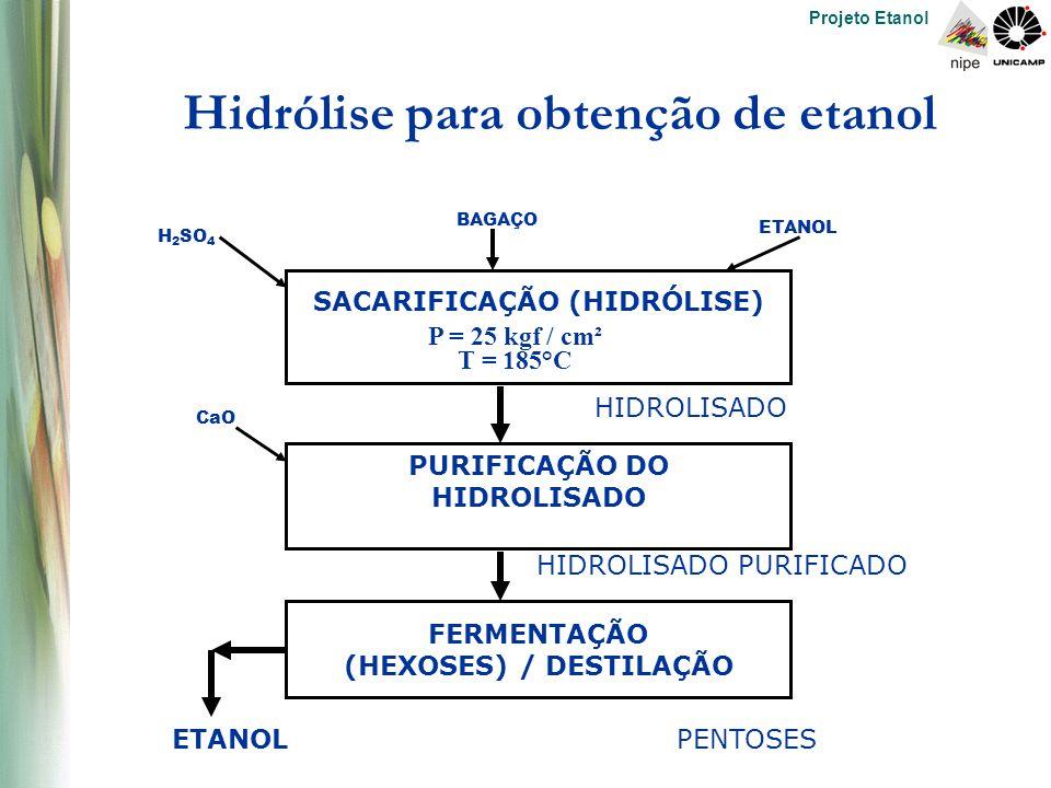 Projeto Etanol Hidrólise para obtenção de etanol SACARIFICAÇÃO (HIDRÓLISE) P = 25 kgf / cm² T = 185°C PURIFICAÇÃO DO HIDROLISADO FERMENTAÇÃO (HEXOSES) / DESTILAÇÃO ETANOLPENTOSES HIDROLISADO PURIFICADO HIDROLISADO CaO H 2 SO 4 BAGAÇO ETANOL