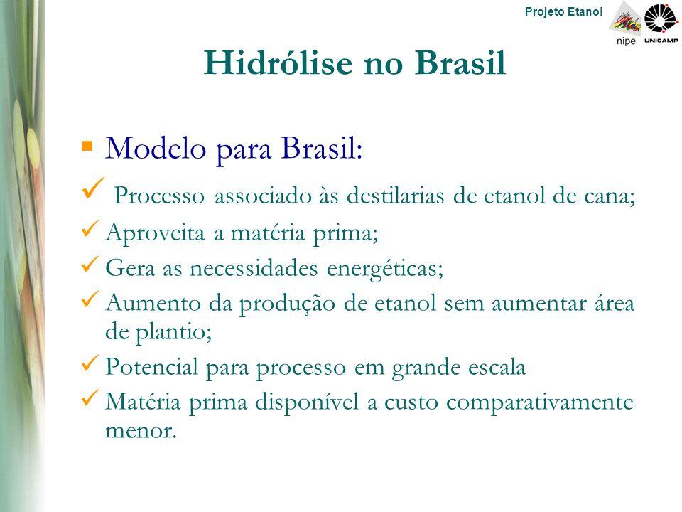 Projeto Etanol Hidrólise no Brasil  Modelo para Brasil: Processo associado às destilarias de etanol de cana; Aproveita a matéria prima; Gera as necessidades energéticas; Aumento da produção de etanol sem aumentar área de plantio; Potencial para processo em grande escala Matéria prima disponível a custo comparativamente menor.