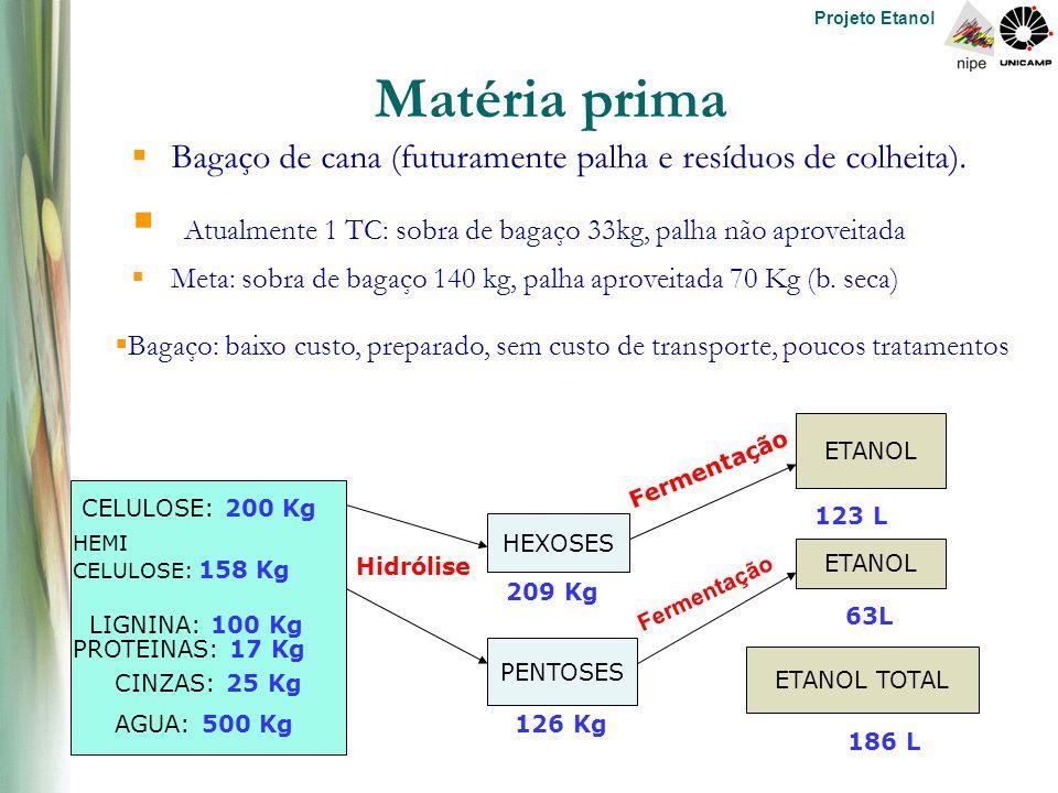Projeto Etanol HEXOSES PENTOSES ETANOL ETANOL TOTAL 123 L 63L 186 L Fermentação Hidrólise 209 Kg 126 Kg CELULOSE: 200 Kg HEMI CELULOSE: 158 Kg LIGNINA: 100 Kg PROTEINAS: 17 Kg CINZAS: 25 Kg AGUA: 500 Kg Matéria prima  Bagaço de cana (futuramente palha e resíduos de colheita).