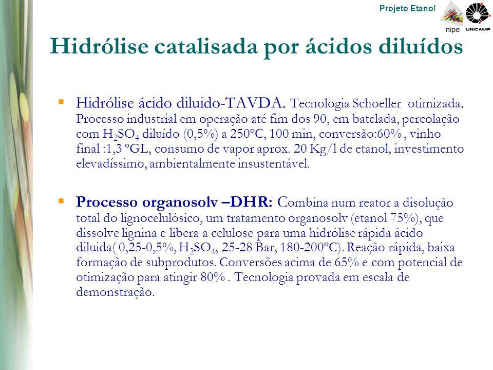 Projeto Etanol Hidrólise catalisada por ácidos diluídos  Hidrólise ácido diluido-TAVDA.