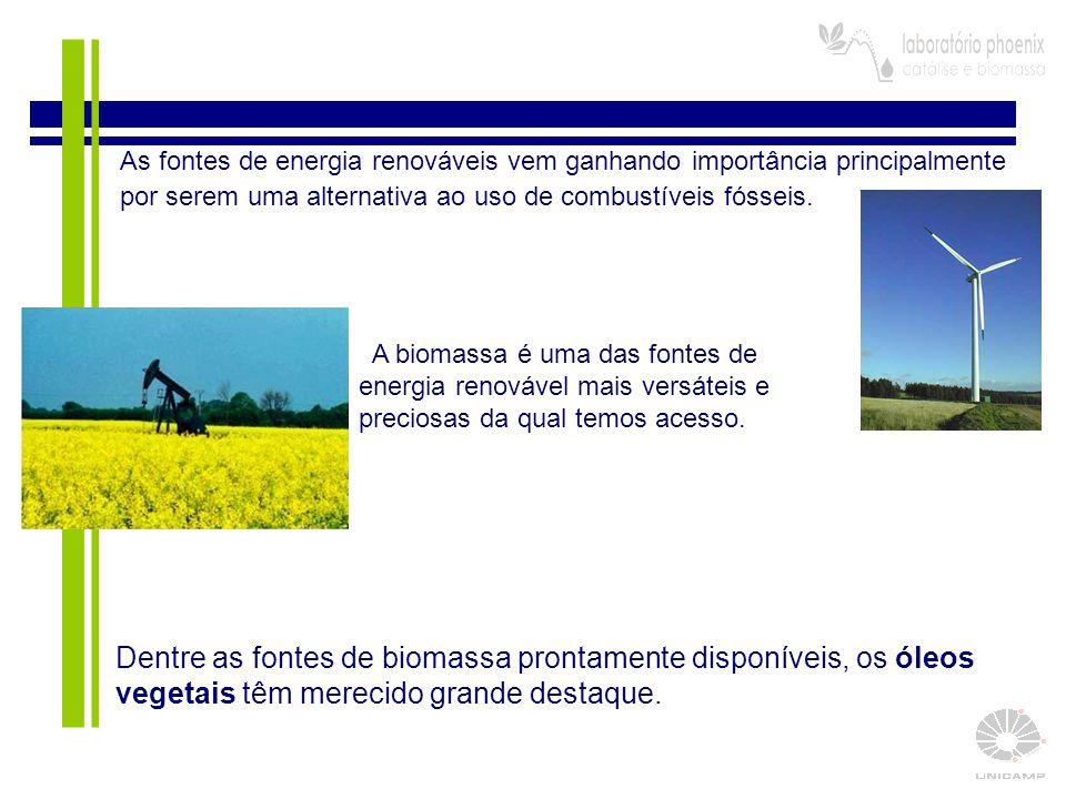 3  Os óleos vegetais possuem elevado poder calorífico e não possuem enxofre em sua composição.